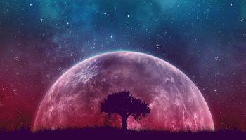 interactuar_universo