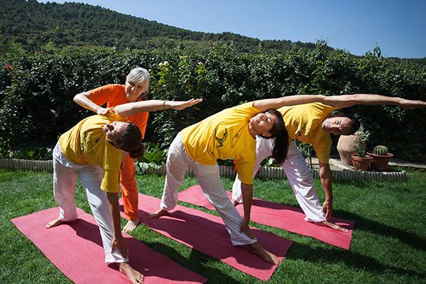 La formación de profesor de yoga. Una forma de transformación ...